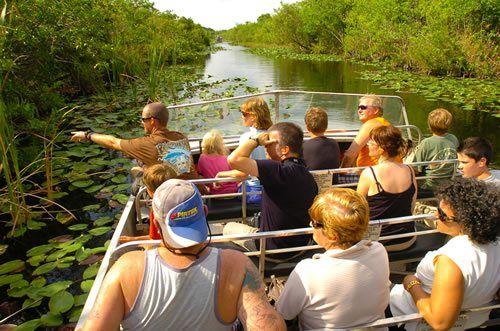 Eco Tours Boat Tours Everglades Boat Tours Private Tours